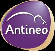 antineo
